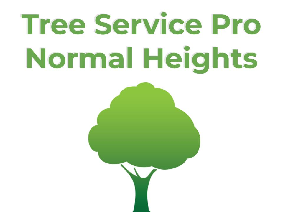 Tree Service Normal Heights